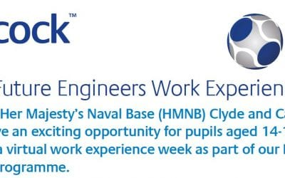 Calling year 10 – Are you interested in the chance to undertake some valuable STEM work experience?